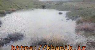 جاری شدن آب در قنات امرودکن بعد از یک دهه خشکی و بی آبی+فیلم
